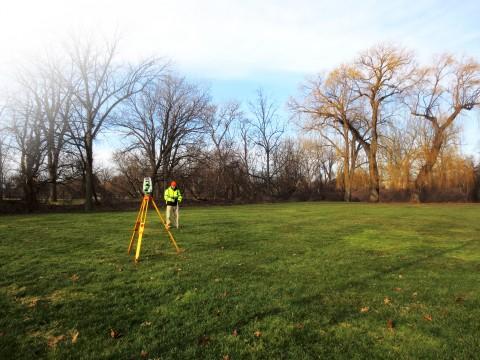 Survey Grass